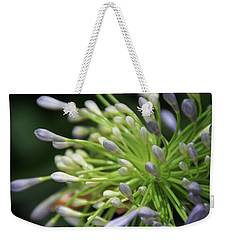 Weekender Tote Bag featuring the photograph Agapanthus, The Spider Flower by Yoel Koskas