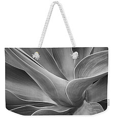 Agave Shadows And Light Weekender Tote Bag