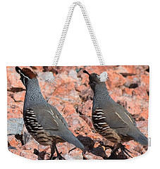 Ahhhh My Little Desert Quail Weekender Tote Bag by John Glass