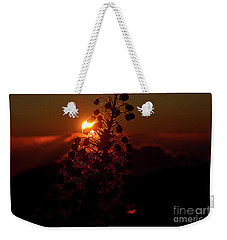Weekender Tote Bag featuring the photograph Ahinahina - Silversword - Argyroxiphium Sandwicense - Sunrise by Sharon Mau