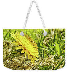 Weekender Tote Bag featuring the photograph Aim High by Robert Knight