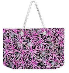 Airplants Weekender Tote Bag by Tim Gainey