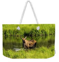 Alaskan Moose Weekender Tote Bag
