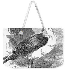 Albatross Weekender Tote Bag by Granger