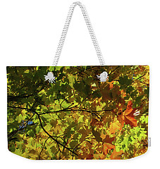 All The Autumn Colours Weekender Tote Bag