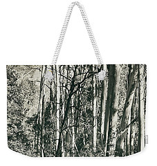 Weekender Tote Bag featuring the photograph All Was Tranquil by Linda Lees
