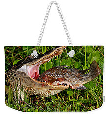 Alligator Eating Fish Weekender Tote Bag
