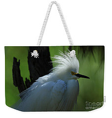 Weekender Tote Bag featuring the photograph Alligator Farm Snowy Egret by Deborah Benoit