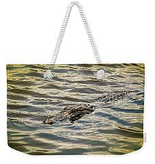 Alligator In Lake Alice Weekender Tote Bag by Louis Ferreira