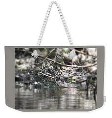 Alligator In Silver Weekender Tote Bag