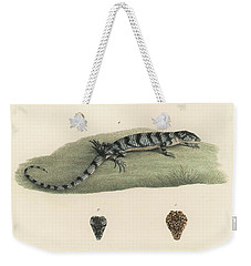 Alligator Lizards Weekender Tote Bag