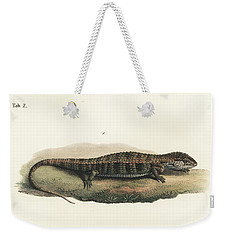 Alligator Lizards From Mexico Weekender Tote Bag