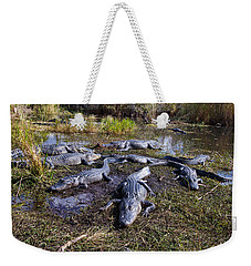 Alligators 280 Weekender Tote Bag