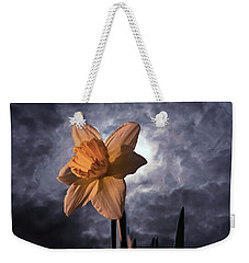 Weekender Tote Bag featuring the photograph Alone by Roseann Errigo