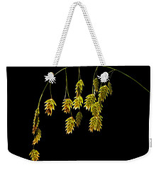 Along The Curve Weekender Tote Bag
