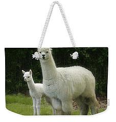 Alpaca And Foal Weekender Tote Bag