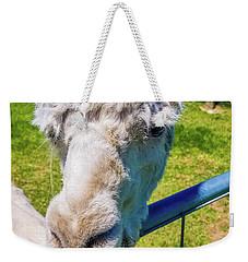 Alpaca Yeah Weekender Tote Bag