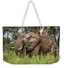 Alpha Male Elephant Weekender Tote Bag