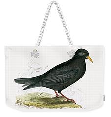 Alpine Chough Weekender Tote Bag by English School