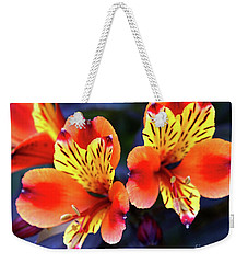 Weekender Tote Bag featuring the photograph Alstroemeria Indian Summer by Baggieoldboy