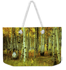 Weekender Tote Bag featuring the photograph Alvarado Autumn 1 by Marie Leslie