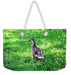 Am I Cute Or What Weekender Tote Bag by Ramona Matei