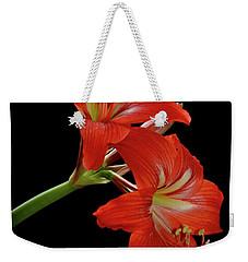 Amaryllis Weekender Tote Bag by AnnaJo Vahle