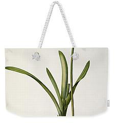 Amaryllis Curvifolia Weekender Tote Bag by Pierre Redoute