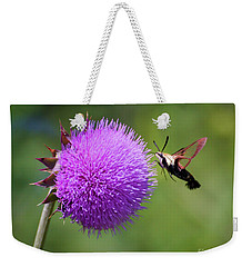 Weekender Tote Bag featuring the photograph Amazing Insects - Hummingbird Moth by Kerri Farley