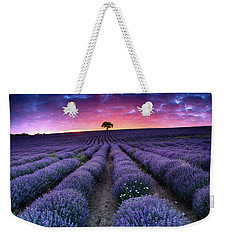 Amazing Lavender Field With A Tree Weekender Tote Bag
