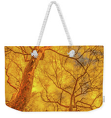 Amber Tree Abstract Weekender Tote Bag by Bruce Pritchett