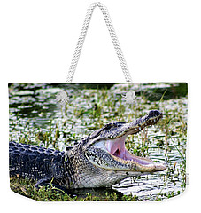 American Alligator Florida 3314_2 Weekender Tote Bag