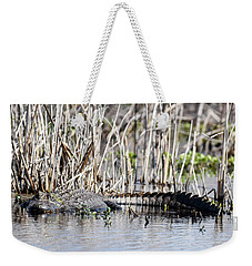 Weekender Tote Bag featuring the photograph American Alligator by Gary Wightman