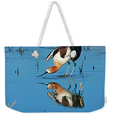 Weekender Tote Bag featuring the photograph American Avocet Reflection by John F Tsumas