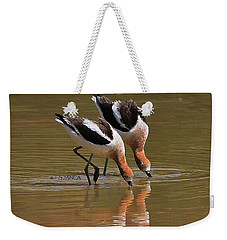 American Avocets Swishing Weekender Tote Bag