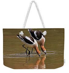 American Avocets Swishing Weekender Tote Bag by Tom Janca