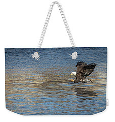 American Bald Eagle 2017-10 Weekender Tote Bag