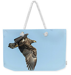 Weekender Tote Bag featuring the photograph American Bald Eagle 2017-17 by Thomas Young