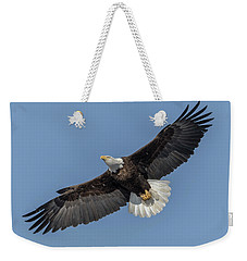 Weekender Tote Bag featuring the photograph American Bald Eagle 2017-18 by Thomas Young