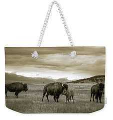 American Bison Calf And Cow Weekender Tote Bag