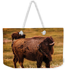 Weekender Tote Bag featuring the photograph American Bison by Chris Bordeleau