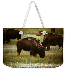 American Bison Grazing Weekender Tote Bag