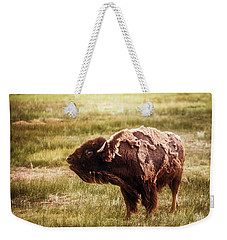 American Bison Into The Wind Weekender Tote Bag