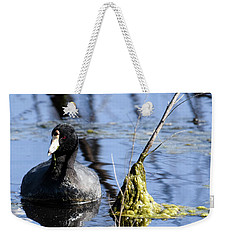 Weekender Tote Bag featuring the photograph American Coot by Gary Wightman