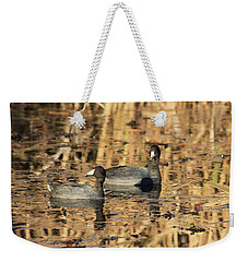 Weekender Tote Bag featuring the photograph American Coots by Jerry Battle