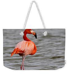 American Flamingo Weekender Tote Bag by Meg Rousher