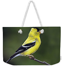 American Golden Finch Weekender Tote Bag by William Lee