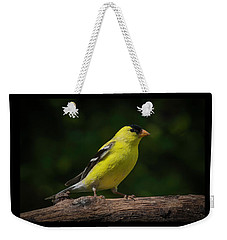 American Goldfinch Male Weekender Tote Bag