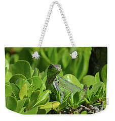 American Iguana Creeping Through A Bush Weekender Tote Bag by DejaVu Designs