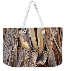 American Kestrels Weekender Tote Bag by Dan Redmon